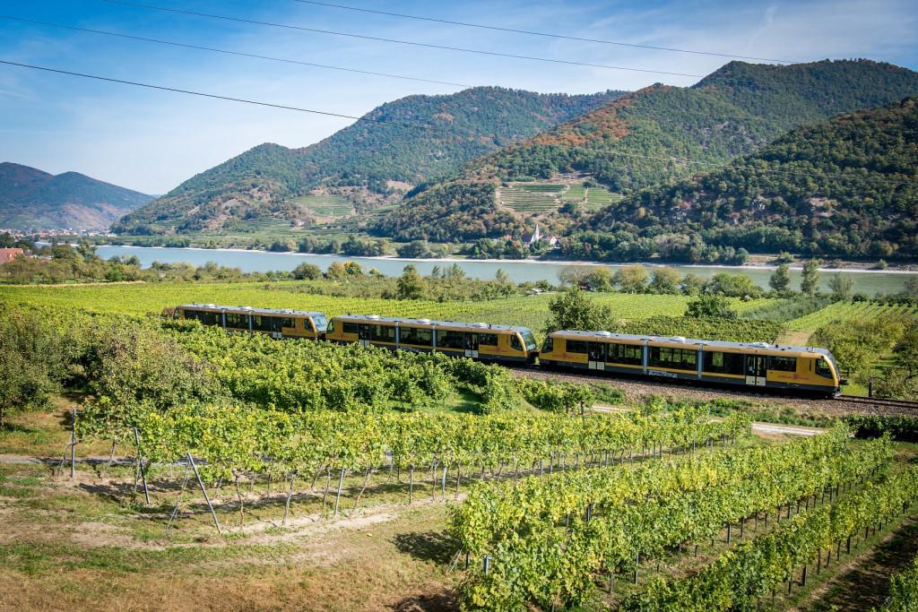 Foto: Frühlingsfahrt im Zeichen des Wachauer Weins. (©NÖVOG/Kerschbaummayr)